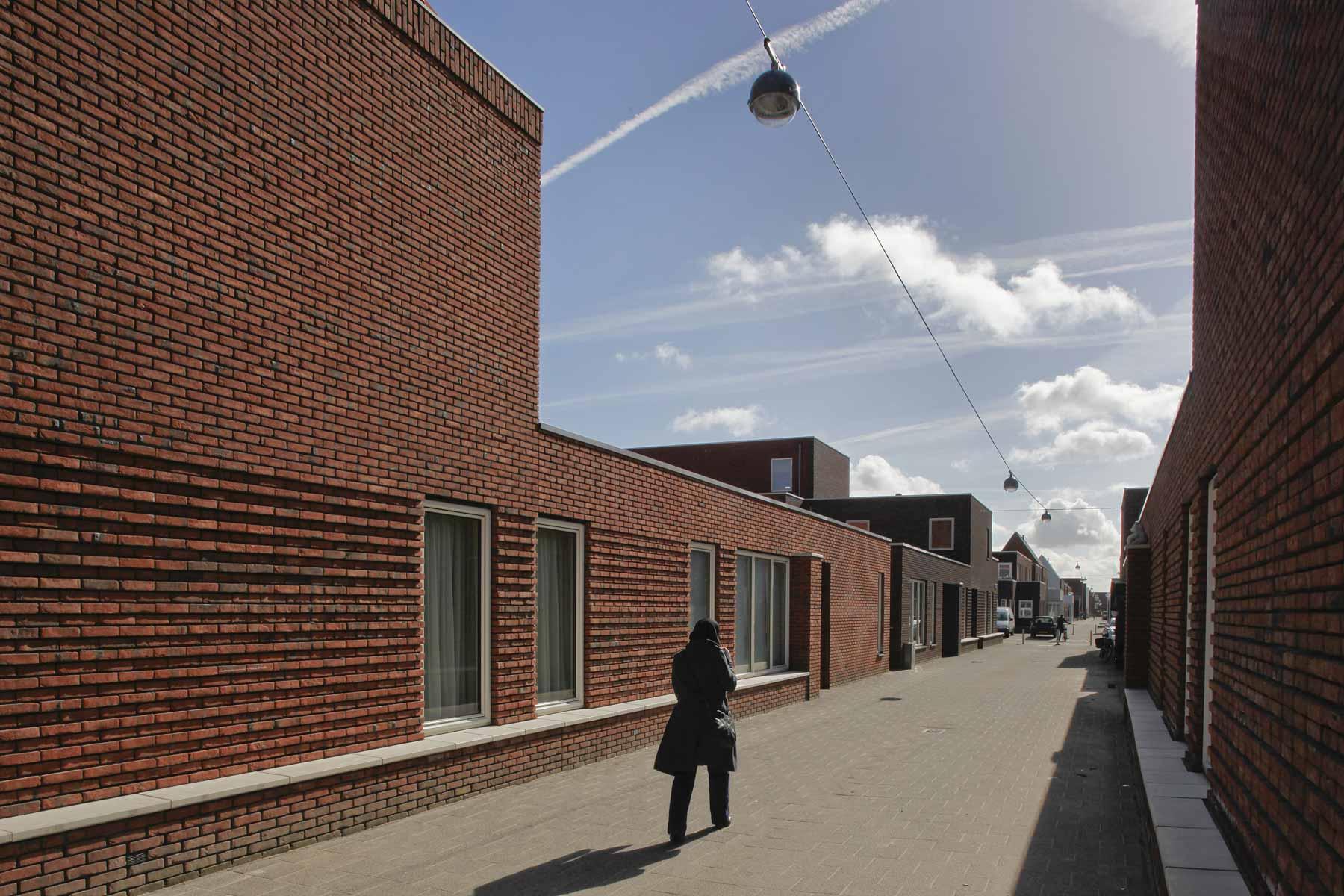 Zwarte hond wateringse veld fotografie frank hanswijk